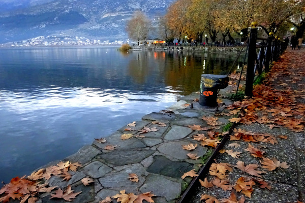 The paved lakefront promenade of Ioannina full of fallen tree leaves during an autumn day.