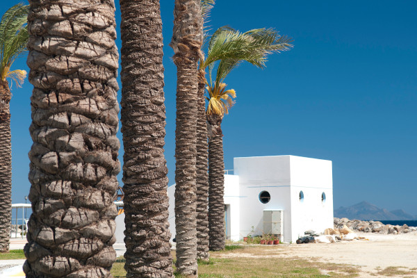 A white house and palm trees at the area of Kardamena on the island of Kos.