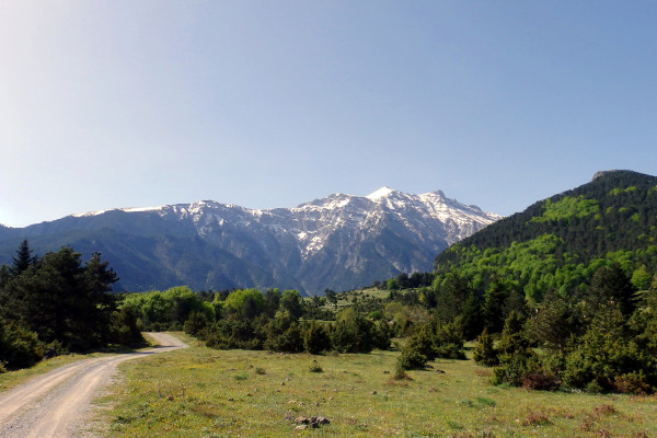 A rural narrow road among the dense vegetation and the mountain range of Olympus in the background..