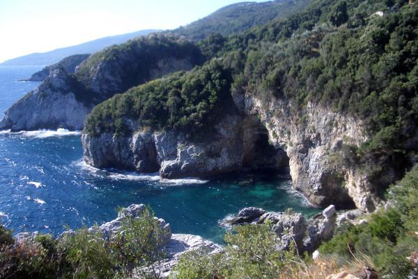 Dense vegetation reaches the rocky coastline of Pelion.