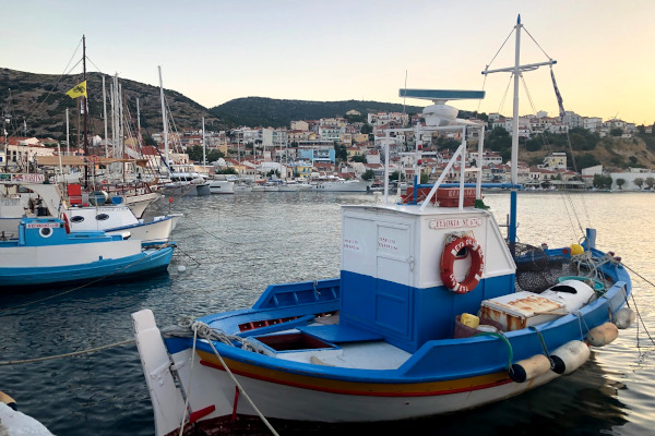 A picture of the port of Pythagorio with small fishing boats and the buildings of the settlement in the background.