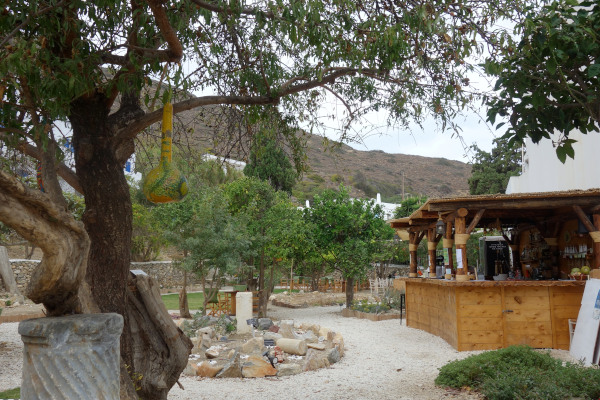 A photo that shows the interior of the Amorgos Botanical Park including the facilities of the small cafeteria.