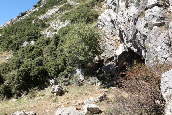 The entrance of the Corycian Cave among the vegetation of the cliff of the mountain.