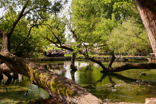 A green landscape that includes the lush tree vegetation and a lake in the Park of Agia Varvara in Drama.