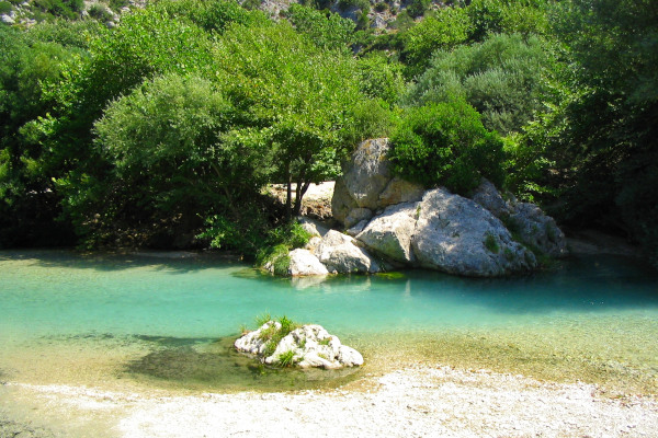 An image of the Acheron River and one of its shores with some big rocks and dense vegetation.