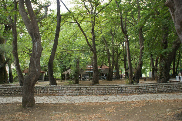 The high trees and the dense vegetation of Kefalovriso Park as well as the building of a small taverna.