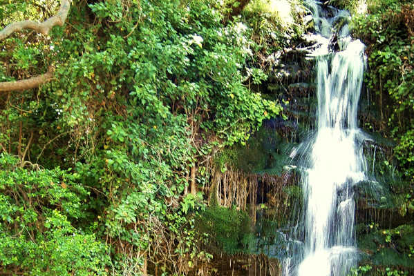 The waterfall of Platanistos surrounded by dense vegetation.