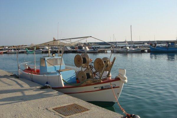 Fishing boats anchored in the Port of Nea Kallikratia.