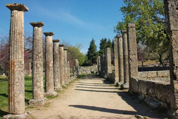 A photo depicting the columns of the Palaestra building of Olympia.