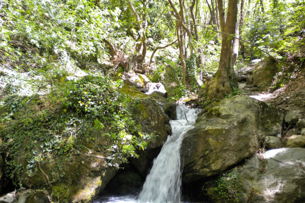 A stream flowing among the rocks and the dense vegetation. A picture taken at the Centaurs' Path of Portaria