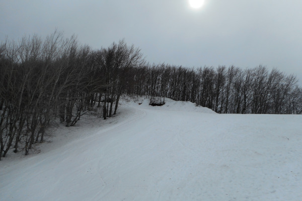 One of the slopes of Pelion Ski Centre Agriolefkes.