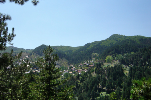 An overview of the Perivoli village among the dense vegetation of Pindus National Park.