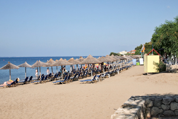 A part of the beach of Psakoudia of Polygyros of Halkidiki that includes numerous umbrellas and sunbeds of a beach bar.