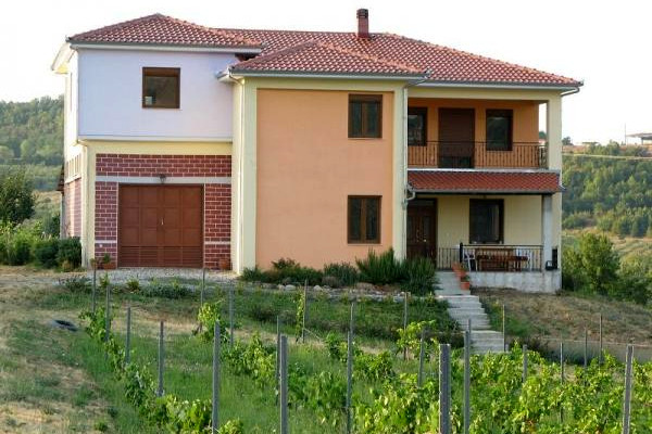 The building of the Argatia Winery in Rodochori with a vineyard at the front yard.