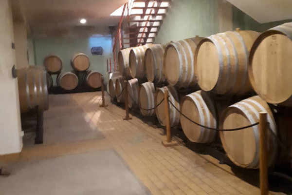 A picture showing several wine barrels in the cellar of Samos Wine Museum.
