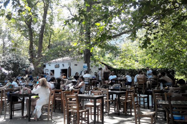 People enjoying coffee and refreshments under the shadow of tall trees at a cafeteria of Therma square on Samothraki.