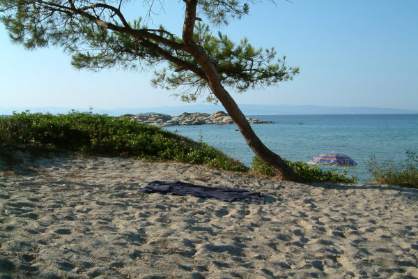 A photo showing a part of the Karidi beach at Vourvourou. Sithonia