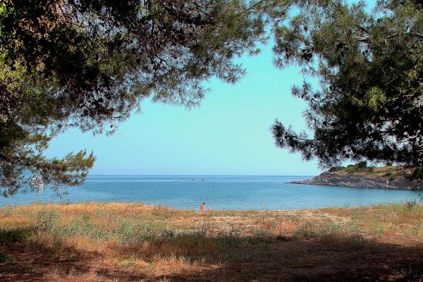 A photo taken among trees shows the coast of Neos Marmaras on Sithonia of Halkidiki.