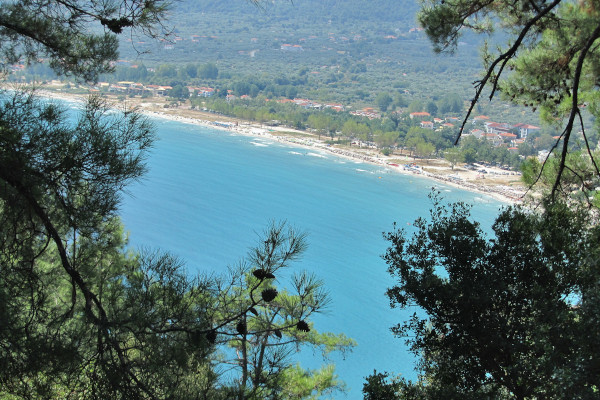An overview of the beach of Chrysi Ammoudia on Thasos taken among the trees of the mountain.