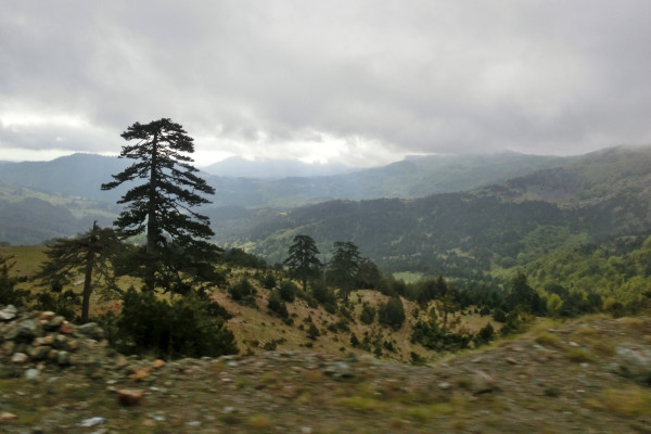 An overview of the natural landscape of Valia Kalda, including mountains, trees, and the valley itself.