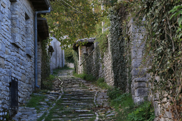 A narrow cobbled-stoned road among trees inside the settlement of Monodendri.