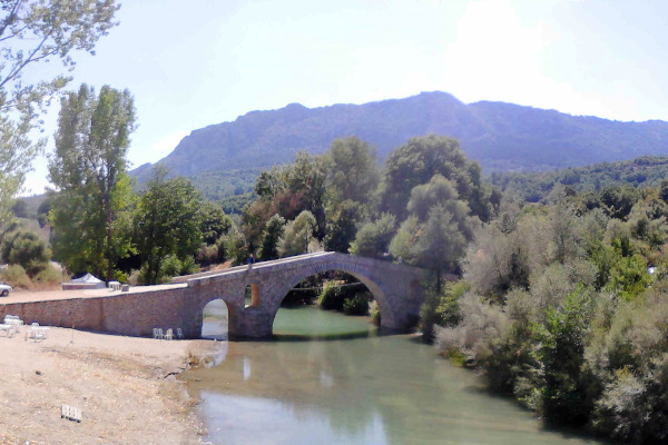 The stone-built bridge of Ziakas among the dense vegetation of the area.